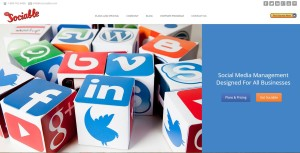 Social Media Marketing Webpage shot